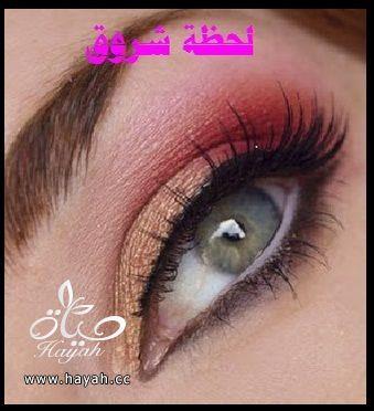 hayahcc_1398785459_878.jpg