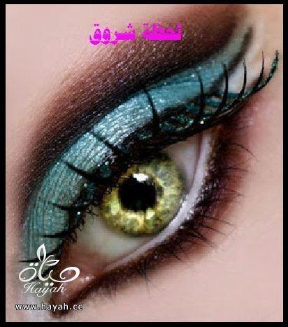 hayahcc_1398785598_735.jpg