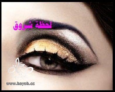 hayahcc_1398785769_776.jpg