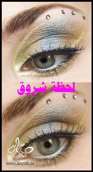 hayahcc_1398785803_814.jpg