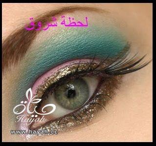 hayahcc_1398785825_355.jpg