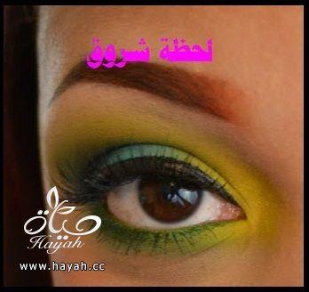 hayahcc_1398785826_976.jpg