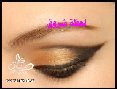 hayahcc_1398785979_126.jpg
