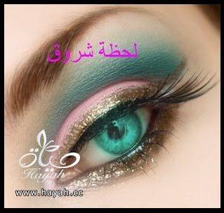 hayahcc_1398786017_248.jpg
