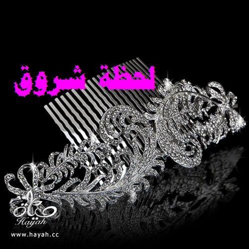 hayahcc_1401092307_268.jpg