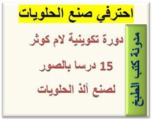 كتاب دورة تدريبية احترافية لصنع الحلويات hayahcc_1401463660_758.jpg