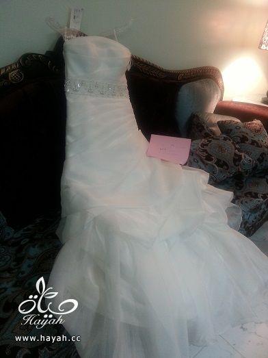 فساتين زفاف جديده موديلات أمريكيه hayahcc_1402517780_304.jpg