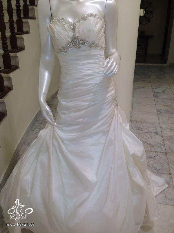 فساتين زفاف جديده موديلات أمريكيه hayahcc_1402517780_959.jpg