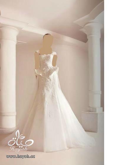اجمل فساتين زواج , فساتين كشخة للزواجات hayahcc_1405580670_639.jpg