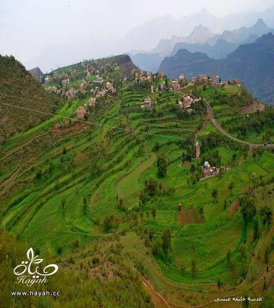 أجمل مناظر مدينة إب ( عاصمة اليمن السياحية ) hayahcc_1410884827_156.jpg