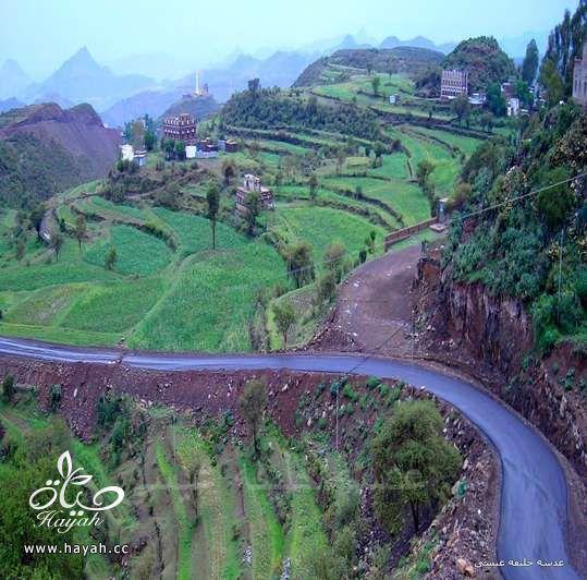 أجمل مناظر مدينة إب ( عاصمة اليمن السياحية ) hayahcc_1410884827_160.jpg