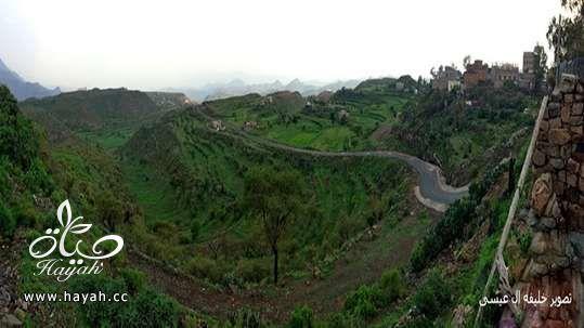 أجمل مناظر مدينة إب ( عاصمة اليمن السياحية ) hayahcc_1410884827_210.jpg