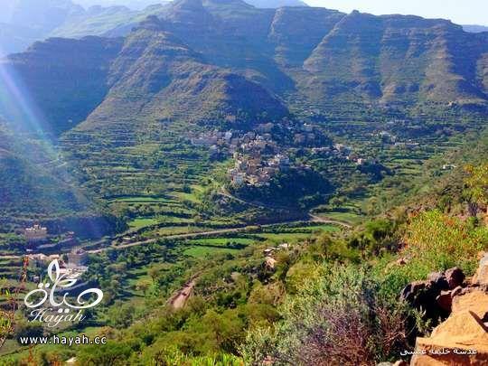أجمل مناظر مدينة إب ( عاصمة اليمن السياحية ) hayahcc_1410884827_498.jpg