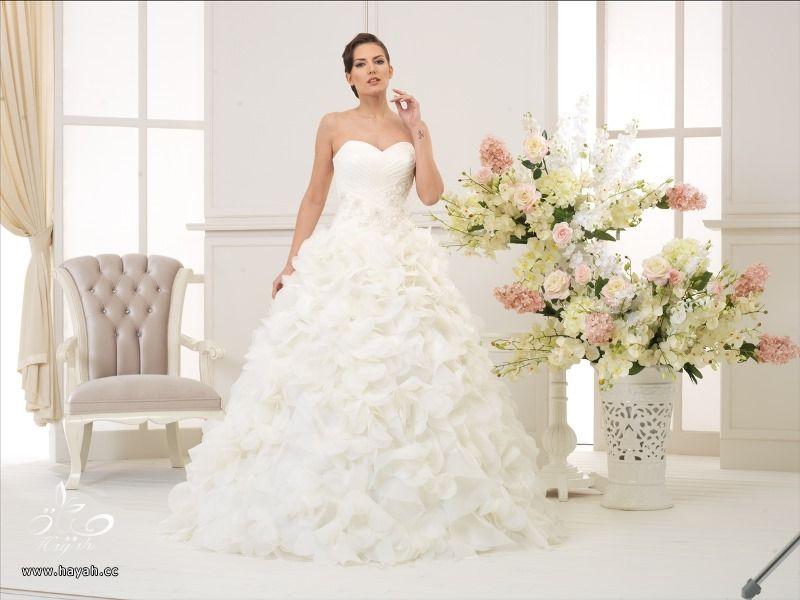 أطياف العروسة للأزياء ( صور بعض الموديلات ) hayahcc_1419061788_728.jpg