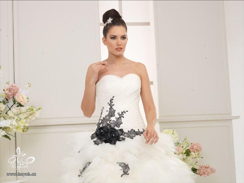أطياف العروسة للأزياء ( صور بعض الموديلات ) hayahcc_1419061790_770.jpg