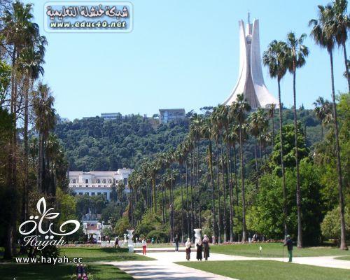 رحلة بالصور الى الجزائر hayahcc_1419940614_451.jpg