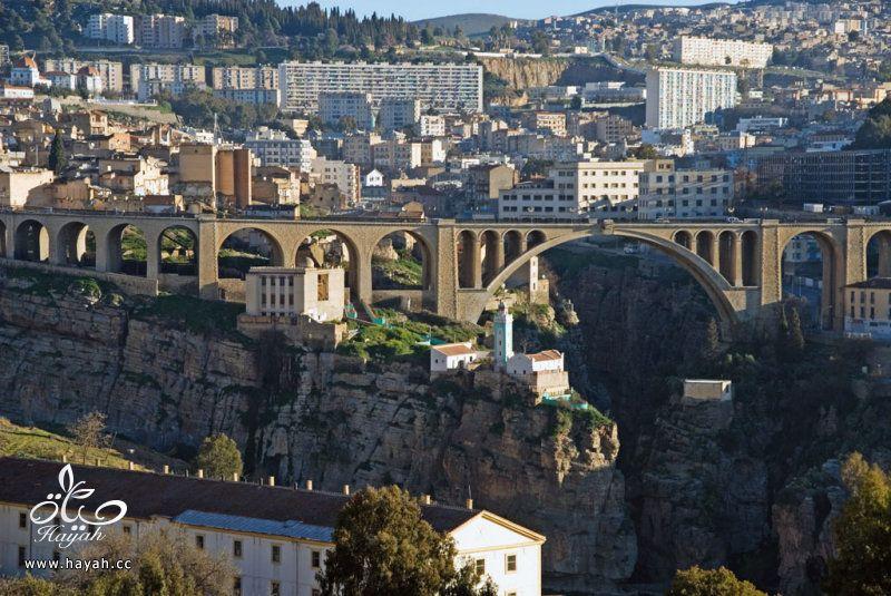 رحلة بالصور الى الجزائر hayahcc_1419940615_581.jpg