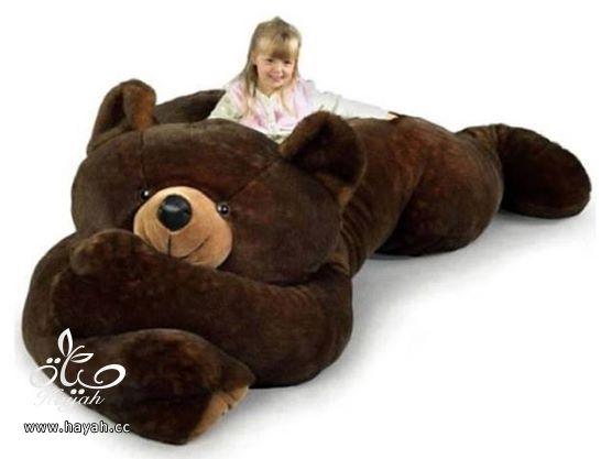 سرير عجيب لتسلية طفلك hayahcc_1422384571_189.jpg