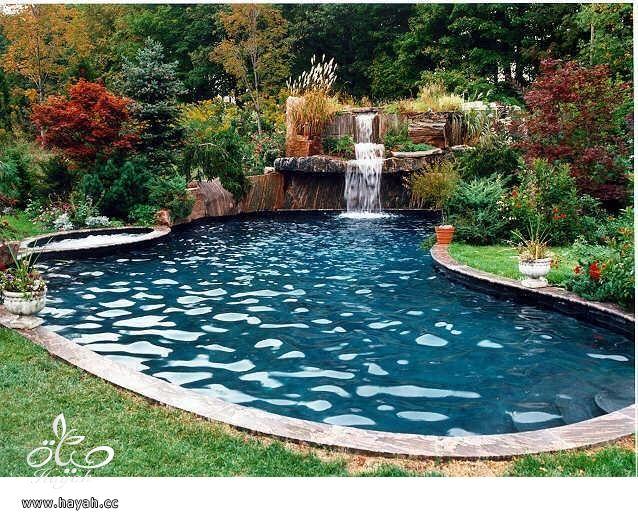 أجمل حمامات بالعالم   صور مسابح كبيرة   صور مسبح كبير للفيلا   أروع المسابح