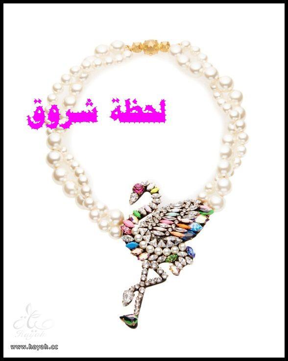 أحدث و أجمل مجموعه جديده من شنط و مجوهرات hayahcc_1422608715_828.jpg