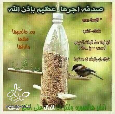 أفكار للصدقة hayahcc_1422962037_447.jpg