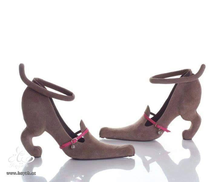 أحذية غير تقليدية غير عادية hayahcc_1423384229_618.jpg