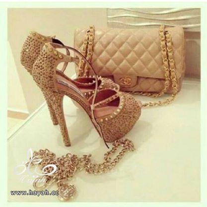 أحذية مع شنطها hayahcc_1424190638_827.jpg