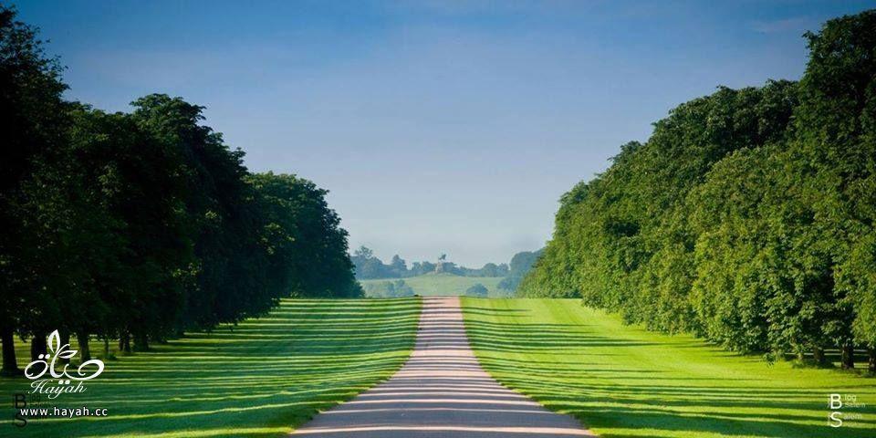 أفضل طريق للمشي hayahcc_1424854275_682.jpg