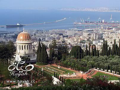 جمال حيفا المحتلة hayahcc_1424947935_222.jpg