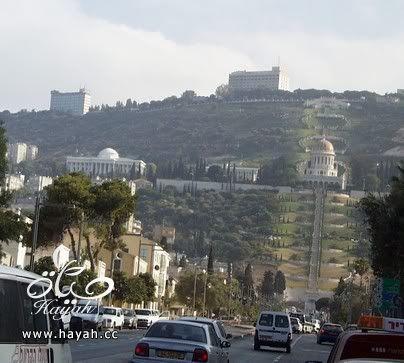 جمال حيفا المحتلة hayahcc_1424947936_843.jpg