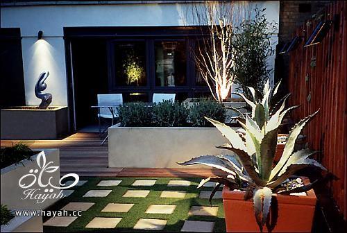 حدائق رائعة على سطح منزلك hayahcc_1425233573_119.jpg