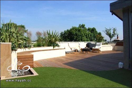 حدائق رائعة على سطح منزلك hayahcc_1425233573_250.jpg