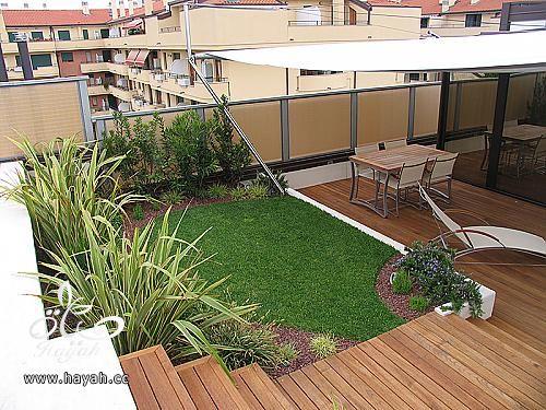 حدائق رائعة على سطح منزلك hayahcc_1425233573_515.jpg