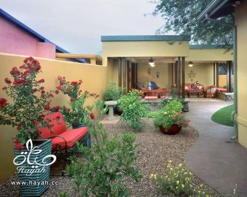 حدائق رائعة على سطح منزلك hayahcc_1425233573_974.jpg