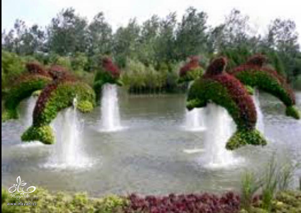 أروع الحدائق الطبيعية hayahcc_1426664391_232.jpg