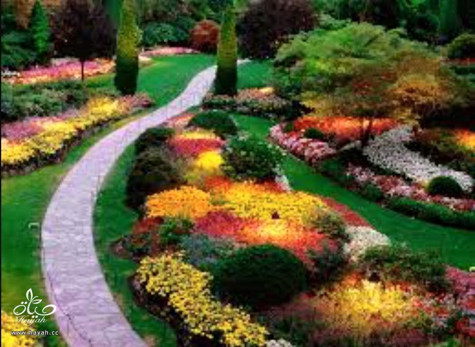 أروع الحدائق الطبيعية hayahcc_1426664392_412.jpg