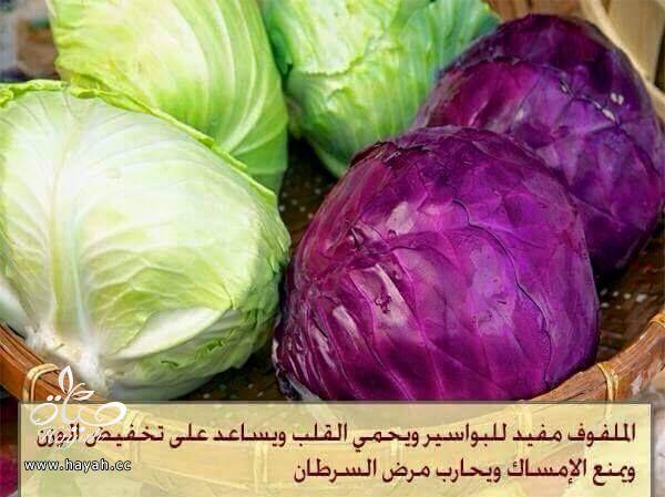 هل تعرفين فوائد هذه النباتات ؟ hayahcc_1426931242_449.jpg