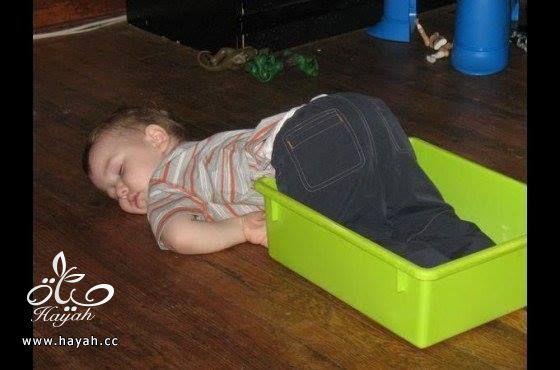 أطفالٌ لا يقاومون النوم hayahcc_1427521031_606.jpg