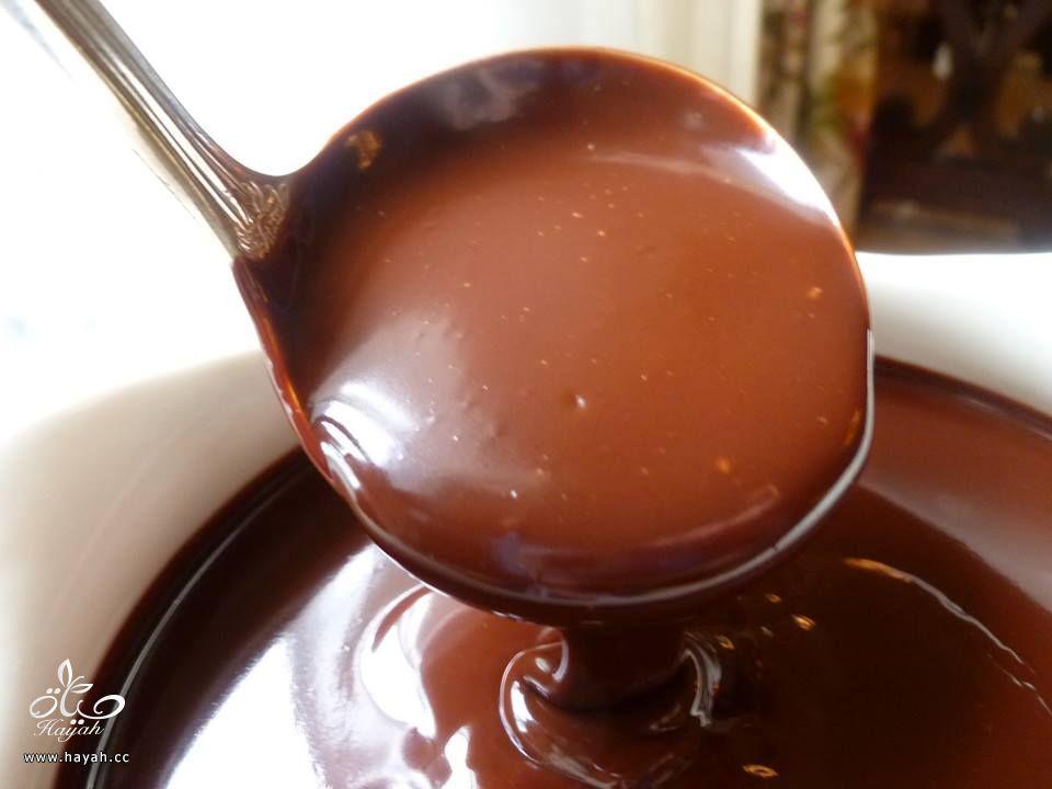 كل ما يتعلق بصوص الشوكولاتة hayahcc_1427521391_335.jpg