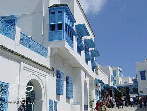 جمال قرية من تونس hayahcc_1427557040_376.jpg