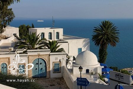 جمال قرية من تونس hayahcc_1427557040_679.jpg
