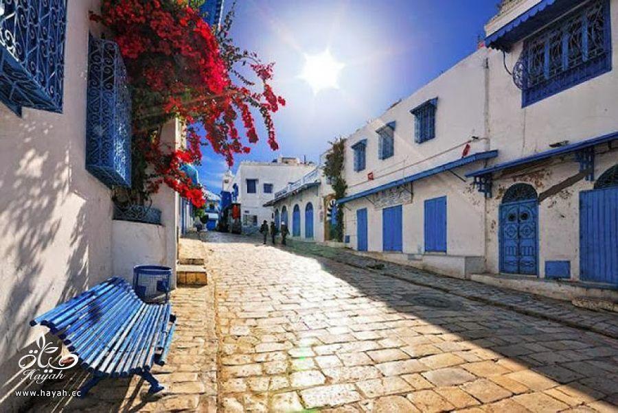 جمال قرية من تونس hayahcc_1427557040_856.jpg
