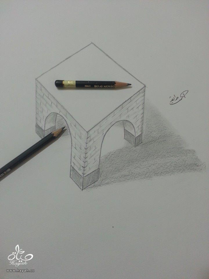 إبداع الرسوم ثلاثية الأبعاد hayahcc_1428229029_240.jpg