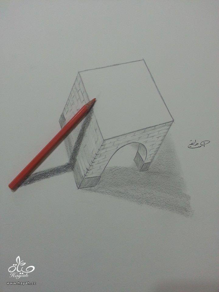 إبداع الرسوم ثلاثية الأبعاد hayahcc_1428229029_533.jpg