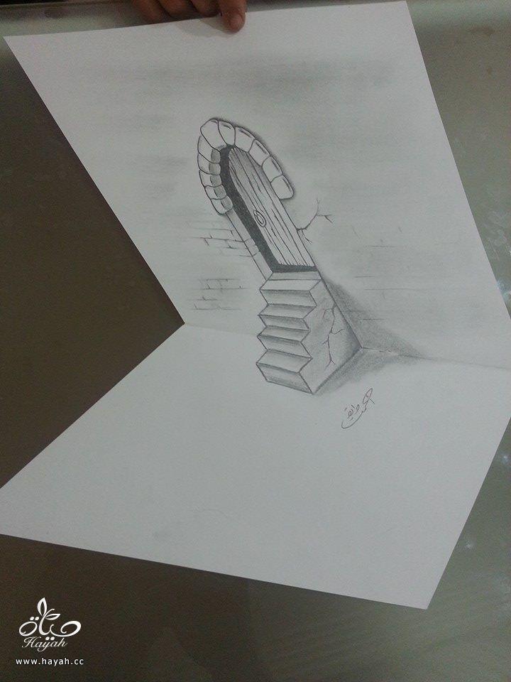 إبداع الرسوم ثلاثية الأبعاد hayahcc_1428229030_333.jpg