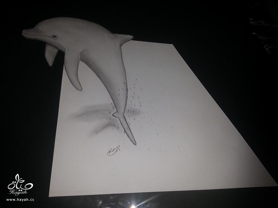 إبداع الرسوم ثلاثية الأبعاد hayahcc_1428229031_619.jpg