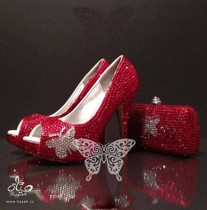 احذية العقيق الملون hayahcc_1428247232_532.jpg