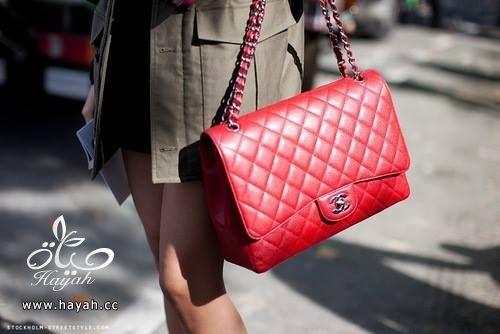 حقائب جميلة hayahcc_1428832250_725.jpg