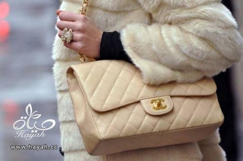 حقائب جميلة hayahcc_1428832252_340.jpg