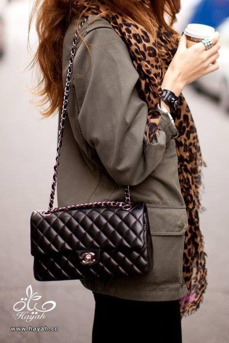 حقائب جميلة hayahcc_1428832253_366.jpg